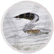 Low Country Marsh Alligator Round Beach Towel