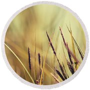 Luminis -s02b - Yellow Round Beach Towel