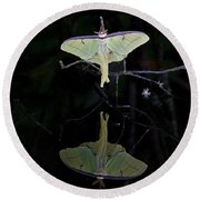 Luna Moth And Reflection Round Beach Towel