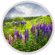 Lupin Flowers In Newfoundland Round Beach Towel