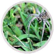 Lurking Spider In The Grass Round Beach Towel