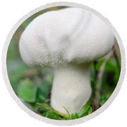 Lycoperdon Round Beach Towel