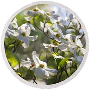 Magical White Flowering Dogwood Blossoms Round Beach Towel
