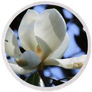 Magnolia In Blue Round Beach Towel
