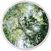 Magnolia Plantation Sc Round Beach Towel