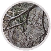 Magnolia Tree Branches Covered With Ice No.3834 Round Beach Towel