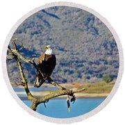 Majestic Eagle Round Beach Towel