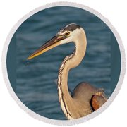 Majestic Great Blue Heron Round Beach Towel