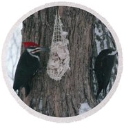 Male And Female Pileated Woodpeckers Round Beach Towel