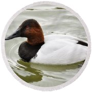Male Canvasback Duck  Round Beach Towel