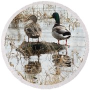 Mallard Ducks Standing On A Rock Round Beach Towel