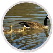 Mama Honker And Goslings Round Beach Towel