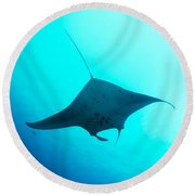 Manta Ray Round Beach Towel
