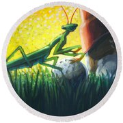 All Players Great And Small - Mantis Round Beach Towel