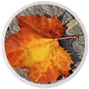 Maple Leaf In Fall Round Beach Towel