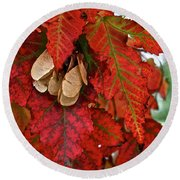 Maple Leaves And Seeds Round Beach Towel