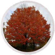 Maples In The Meadow Round Beach Towel