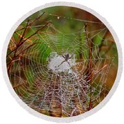 Marsh Spider Web Round Beach Towel