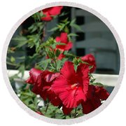 Martha's Vineyard Red Hibiscus And Porch Round Beach Towel