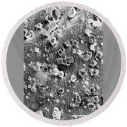 Martian Carbon Dioxide Crystals Round Beach Towel