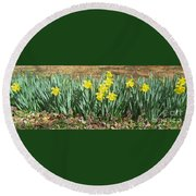 Mary's Daffodils Round Beach Towel