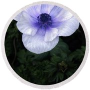 Mascara And Lace Anemone Round Beach Towel