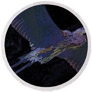 Master Of The Glades Round Beach Towel