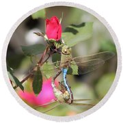 Mating Dragonfly Round Beach Towel