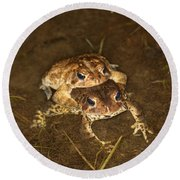 Mating Toads Round Beach Towel