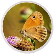 Meadow Brown Butterfly  Round Beach Towel