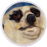Meerkat Eyes Round Beach Towel