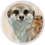 Meerkat 762 Round Beach Towel