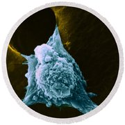 Metastasis Round Beach Towel