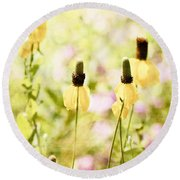 Mexican Hat In Yellow Round Beach Towel