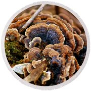 Michigan Fungus Round Beach Towel