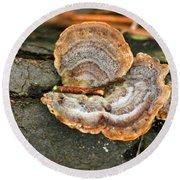 Michigan Golden Fungus Round Beach Towel