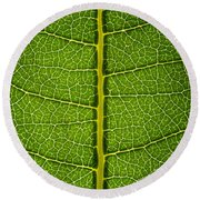 Milkweed Leaf Round Beach Towel