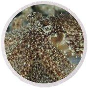 Mimic Octopus Head, North Sulawesi Round Beach Towel