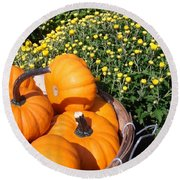 Mini Pumpkins Round Beach Towel by Kimberly Perry