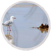 Mirrored Seagull Round Beach Towel by Kaye Menner