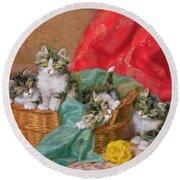 Mischievous Kittens Round Beach Towel