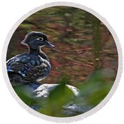 Missy Wood Duck Round Beach Towel