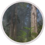 Mists Rising From Lady Bird Johnson Grove Round Beach Towel