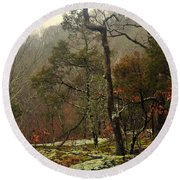 Misty Tree Round Beach Towel
