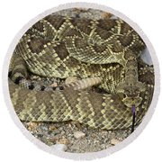 Mohave Diamondback Rattlesnake Coiled Round Beach Towel