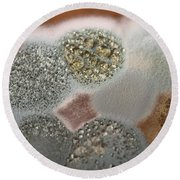 Mold On Agar Round Beach Towel