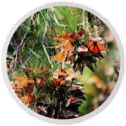 Monarch Butterfly Gathering Round Beach Towel