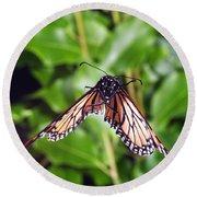 Monarch Butterfly In Flight Round Beach Towel