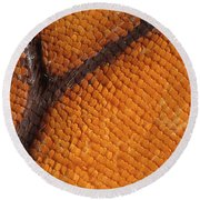 Monarch Butterfly Wing Scales Round Beach Towel