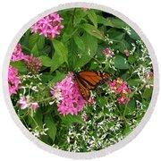 Monarch In The Garden   Round Beach Towel